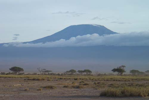 view of kilimanjaro from wild game safari